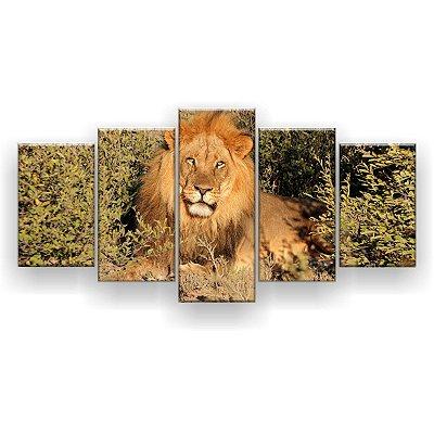 Quadro Decorativo Leão No Mato 129x61 5pc Sala