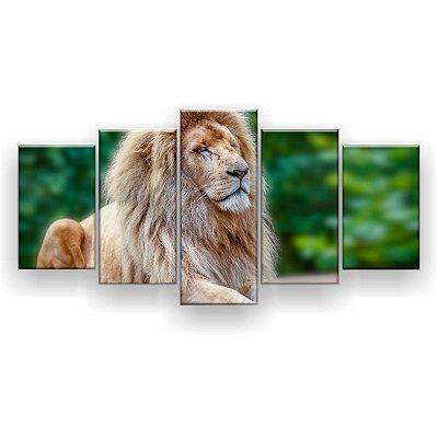 Quadro Decorativo Leão Dormindo 129x61 5pc Sala