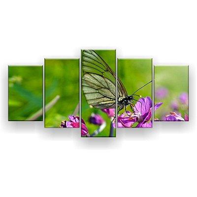 Quadro Decorativo Borboleta Fundo Verde 129x61 5pc Sala
