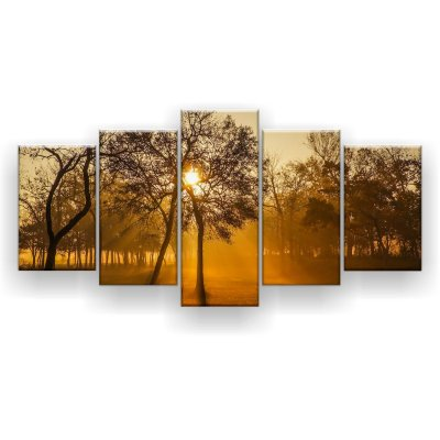 Quadro Decorativo Nascer Do Sol Na Floresta 129x61 5pc Sala