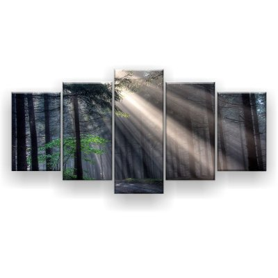 Quadro Decorativo Deus Vigas Floresta Conífera 129x61 5pc Sala