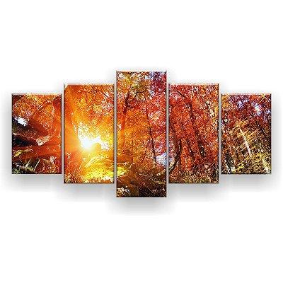 Quadro Decorativo Floresta Solar  129x61 5pc Sala