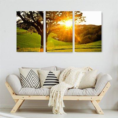 Quadro Decorativo Sol Entre Galhos 3P Sem Moldura 115x57 Sala Quarto