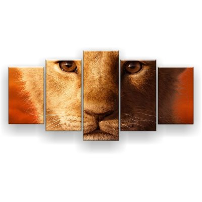 Quadro Decorativo Simba Face 129x61 5pc Sala