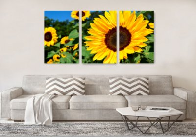 Quadro Decorativo Sunflowers 3P Sem Moldura 115x57 Sala Quarto