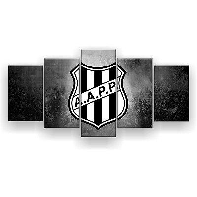 Quadro Decorativo Ponte Preta Futebol Clube 129x61 5pc