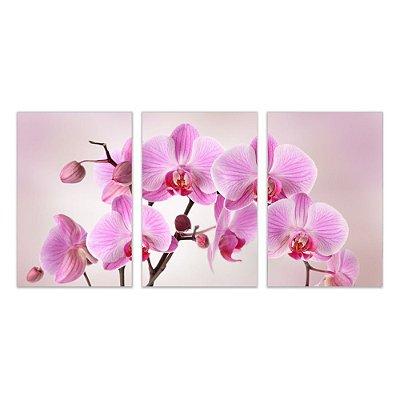 Quadro Decorativo Orquídea Rosa  3P Sem Moldura 115x57