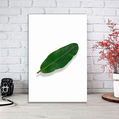 Quadro Decorativo Folha de Bananeira 20x30