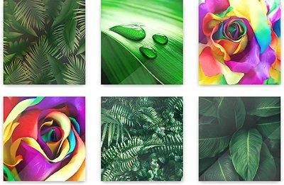 Quadro Decorativo Natureza Folhas Composição 64x37 6pc