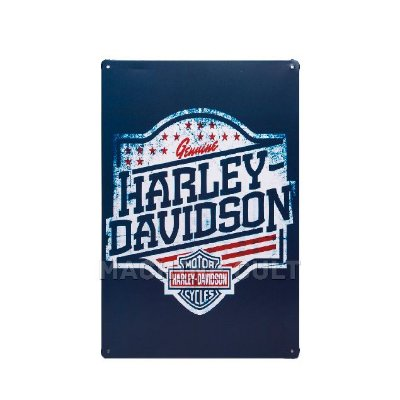 Placa Decorativa Harley-Davidson USA