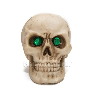 Crânio de Caveira em Resina