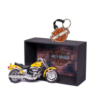 Miniatura Harley-Davidson com Expositor