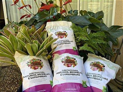 Substrato Pronto Para Plantar Antúrios, Bromélias e Samambaias