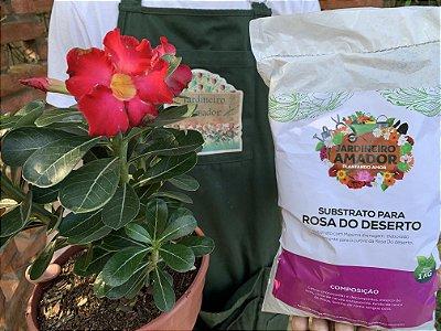Substrato Puro para Rosa Do Deserto - Com Todos os Nutrientes e Pronto para Usar