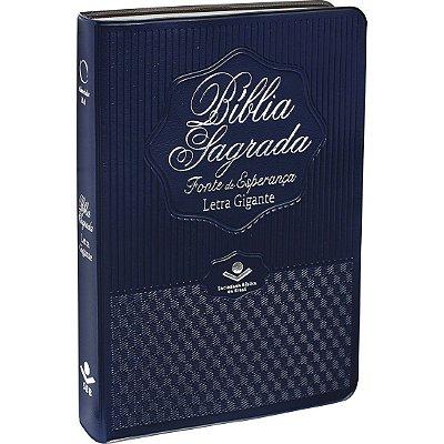 DUPLICADO - BÍBLIA SAGRADA - FONTE DE ESPERANÇA AZUL