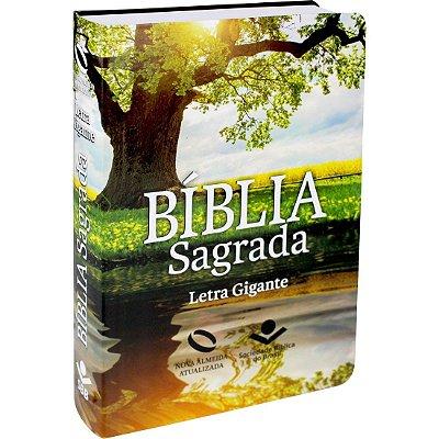 BÍBLIA SAGRADA LETRA GIGANTE C/ ÍNDICE DIGITAL  REFLEXO