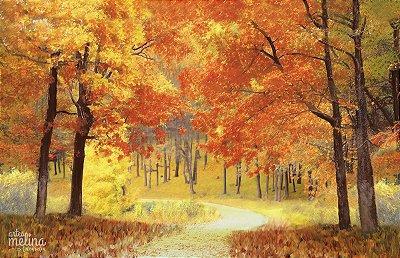 Fundo Fotográfico Floresta de Outono