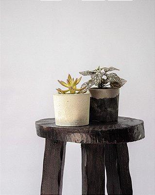 Kit Mini Vasos de Cimento Joá