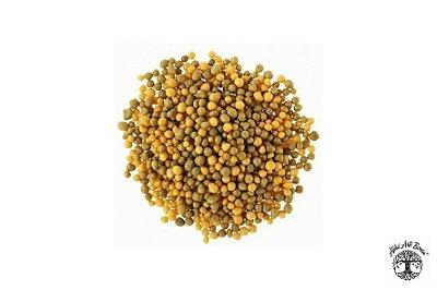 Fertilizante Osmocote PLUS 250g – Liberação Lenta 5 a 6 meses (15-9-12)