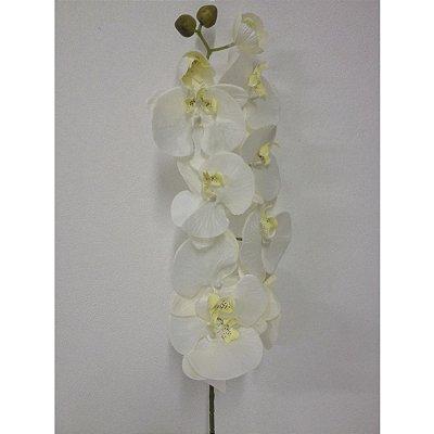 Galho Orquídea Branca