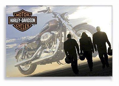 Placa Harley Pessoas