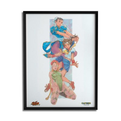 Quadro Decorativo Street Fighter Girl - Beek