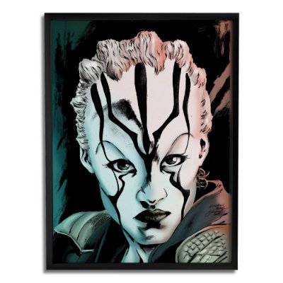 Quadro Decorativo Jaylah Star Trek By Baal's - Beek