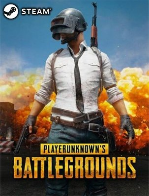PlayerUnknowns Battlegrounds PUBG - Steam Key Original Digital Download