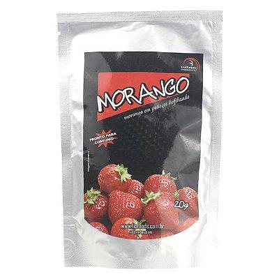 Refeição Liofoods Morango 20g (1 porção)