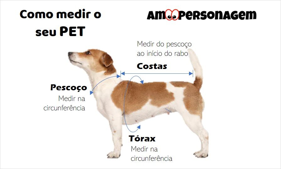 Como medir pet