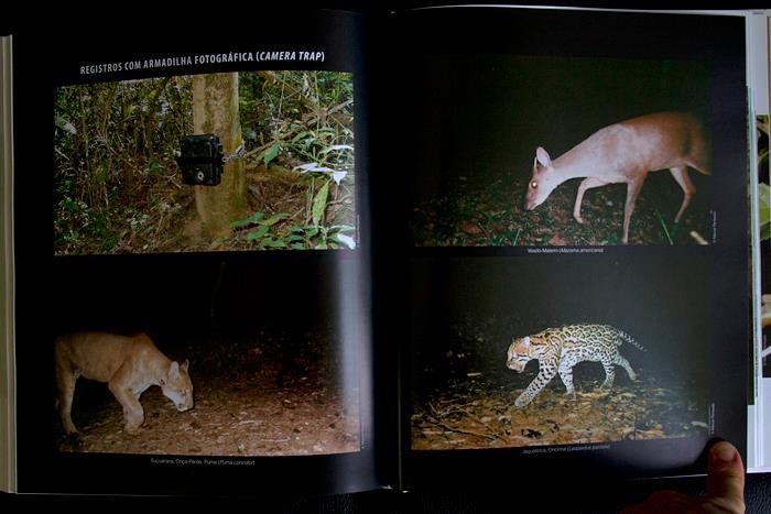A rica fauna do rio Capivari está no belo livro sobre Monte Mor, disponível na Maritaca Store.