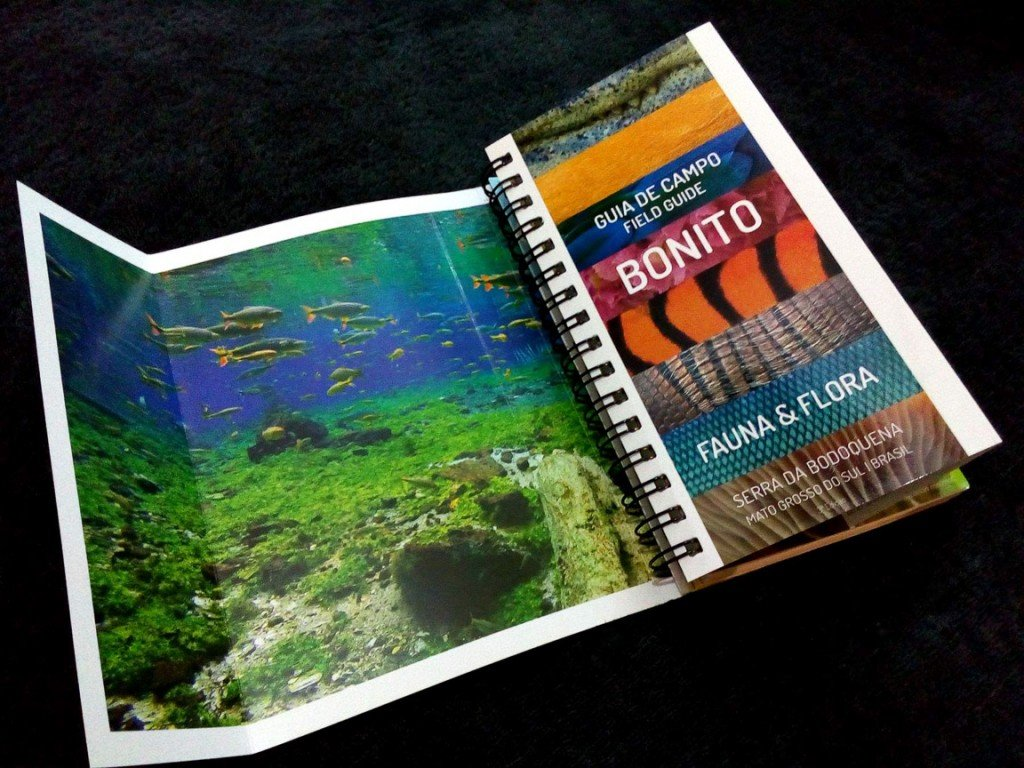 Guia de Campo Fauna e Flora de Bonito, a melhor companhia para visitar a região. Disponível na Maritaca Store.