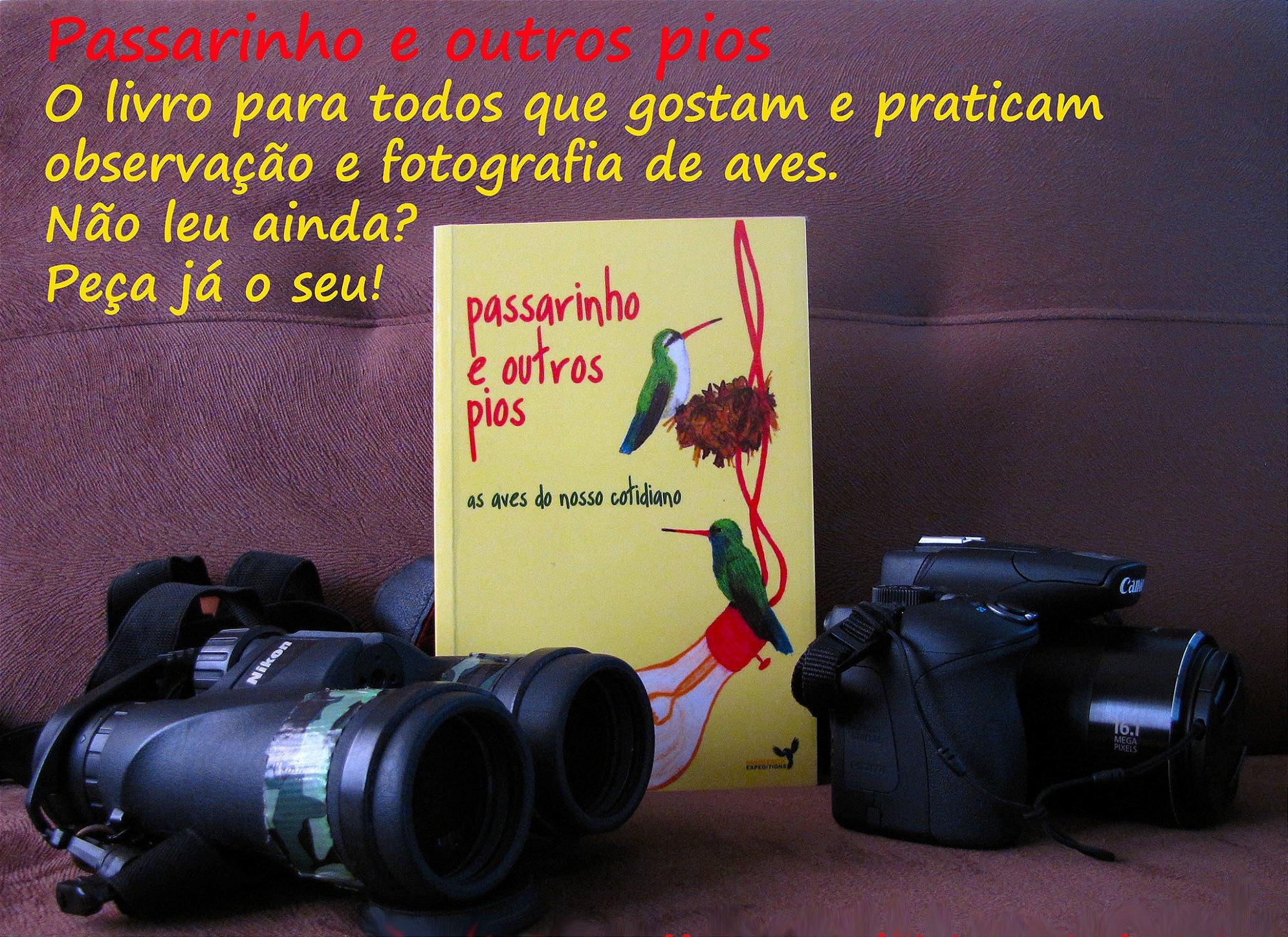 """""""Passarinho e outros pios"""", livro de Tietta Pivatto, está disponível na Maritaca Store."""