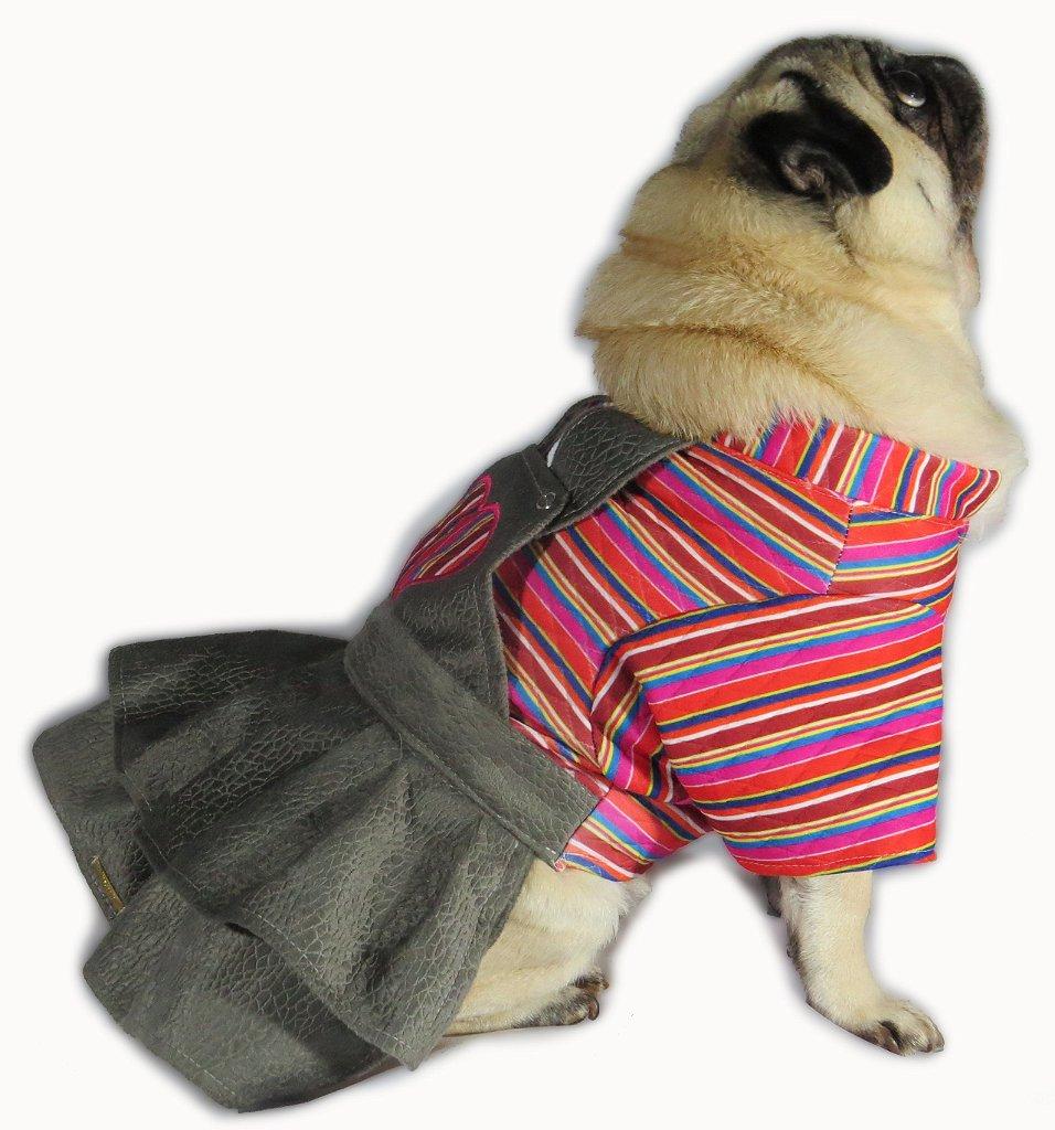 vestido de frio para cachorro