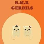 BMR Gerbils