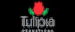 Tulípia