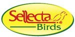 Sellecta Birds