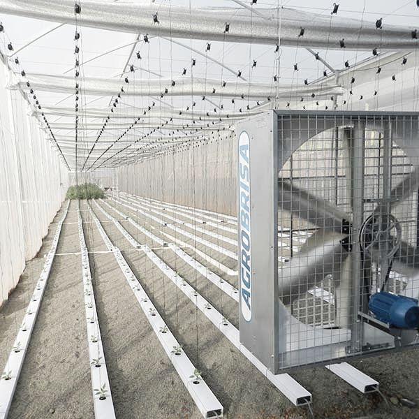 ventilador-estufa-agrobrisa-agroindustrial