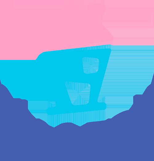 Vila toy