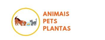 animais, pets e plantas