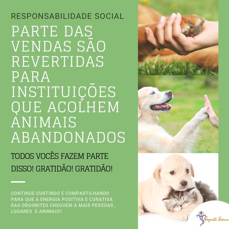 Ajuda aos animais - responsabilidade social
