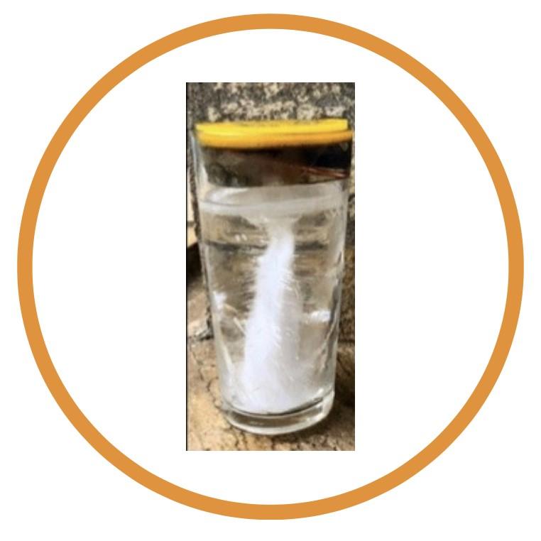 Teste feito com agua congelada e orgonite