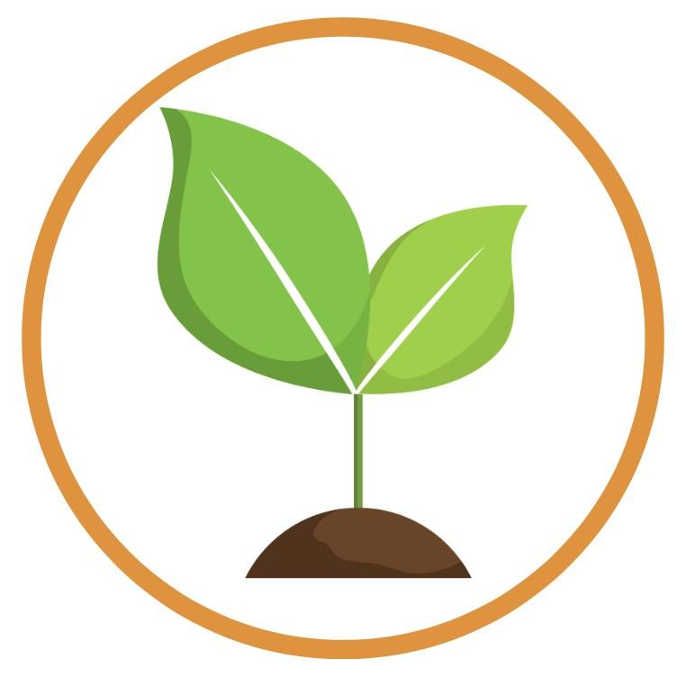 Orgonite para crescimento de plantas, hortas e flores