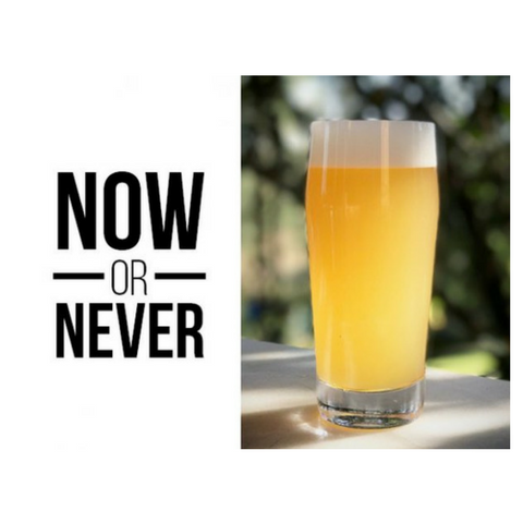 koala san brew now or never new england double india pale ale