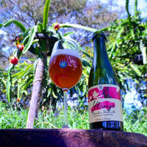 cerveja zalaz ytanga brazilian wild ale