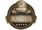 Marfrig Angus