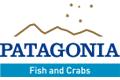 Patagonia Fish