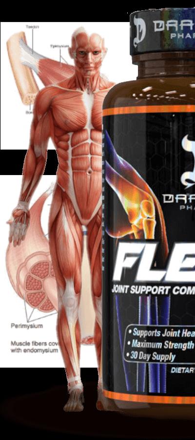 flex-8 dragon pharma é o máximo resultado em recuperações de tendões, cartilagens e articulações