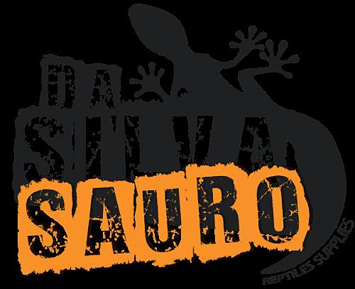 Decoração - Da Silva Sauro 92a7244d31d