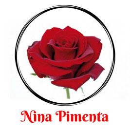 ec27b4918f Nina Pimenta- Vestidos Longos e Vestidos Curtos